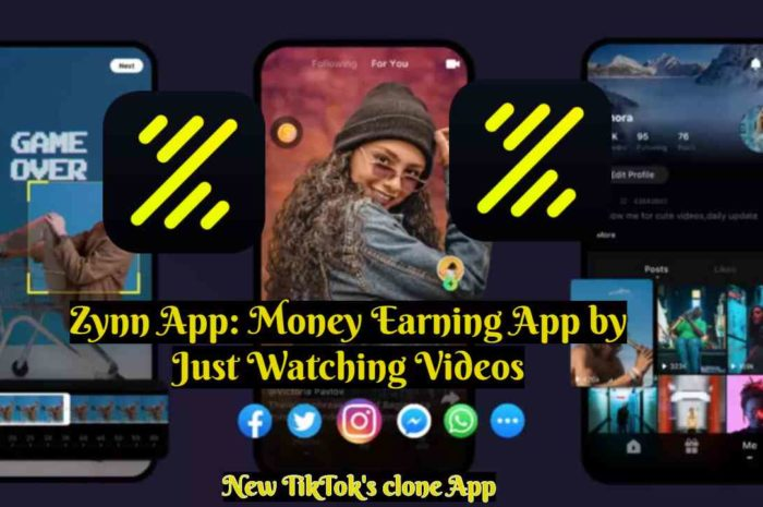 Zynn App 2020: Earn Money by Just Watching Videos: TikTok's clone App: Hit the Top App store
